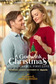 A Godwink Christmas: Second Chance, First Love (2020)