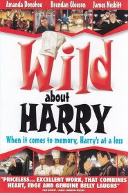 Wild About Harry (2000)