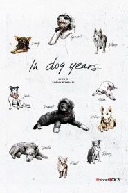 In Dog Years (2019)