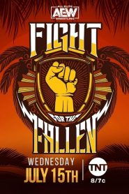 AEW Fight for the Fallen – 2020 (2020)
