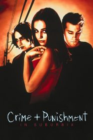 Crime + Punishment in Suburbia (2000)