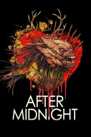After Midnight (2019)