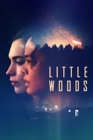 Little Woods (2019)