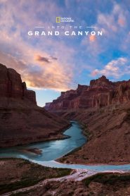 Into the Grand Canyon (2019)