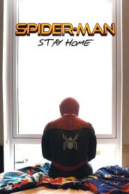 Spider-Man: Stay Home (2020)