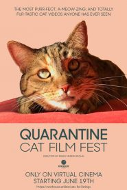 Quarantine Cat Film Festival (2020)