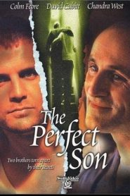 The Perfect Son (2000)