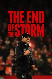 The End of the Storm (2020)
